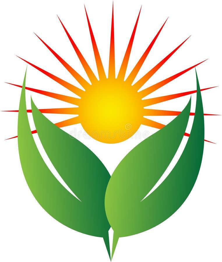 Sun och gräsplan stock illustrationer