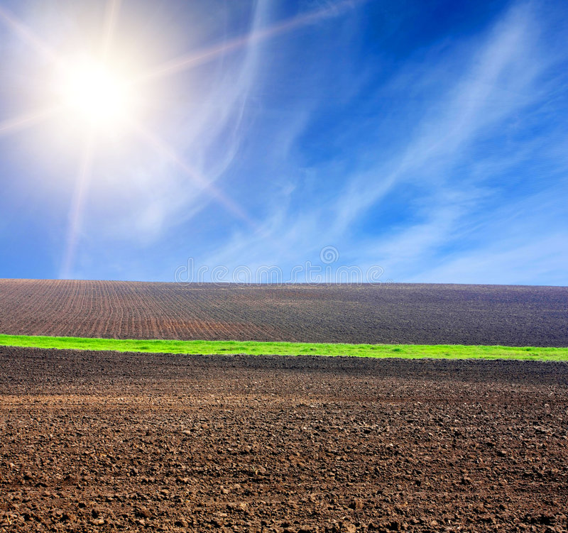 Sun Over Arable Field With Green Line Royalty Free Stock Photography