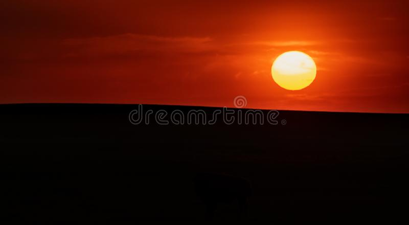 Sun Over Horizon of Smooth Field. In Black Hills stock photo