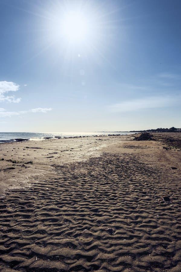 Sun på stranden royaltyfria foton