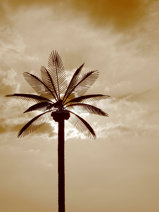 Sun Palms. The sun rays cut through the branches of a artificial palm tree royalty free stock photography