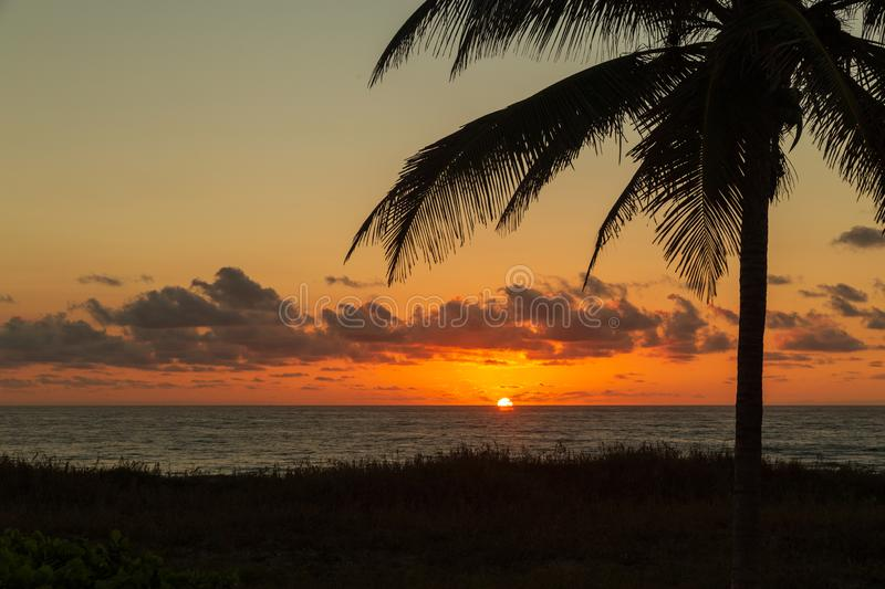 The sun peaking out from the horizon on Delray Beach. The sun peaking out from the horizon on Delray Beach at dawn in Florida stock images