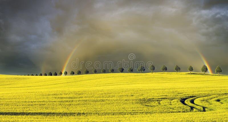 Sun, pioggia e due arcobaleni sopra il campo fotografia stock
