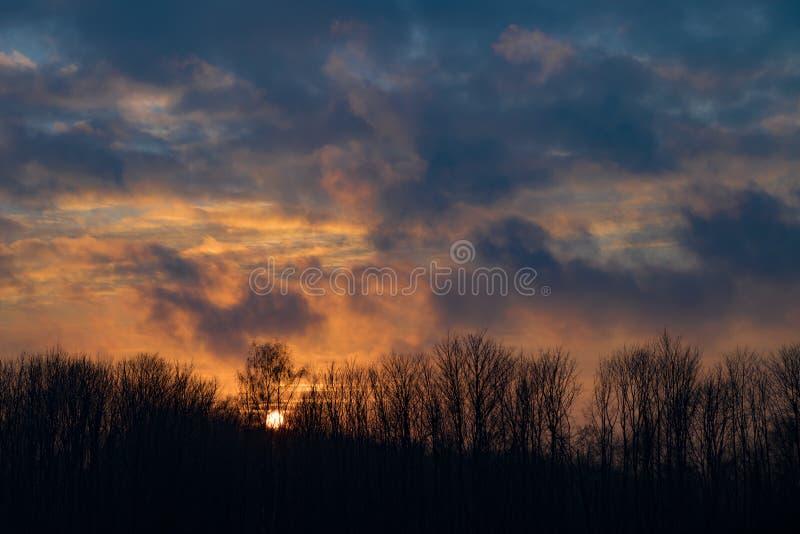 Sun a placé derrière les arbres nus en hiver - règles d'or image libre de droits