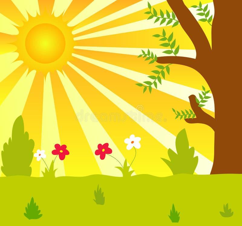 Sun and plants vector illustration