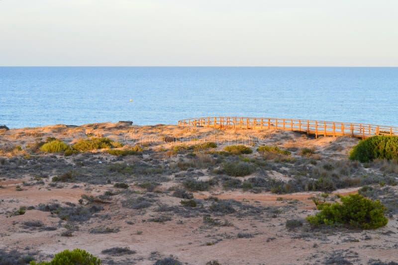 The Sun położenie Przez piasek diuny zdjęcie royalty free