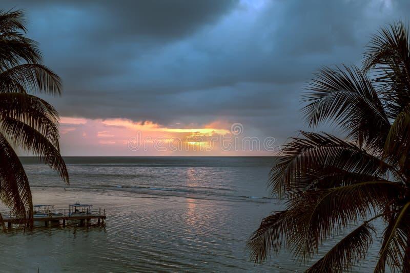 Sun que ajusta-se no oceano com palmeiras imagem de stock