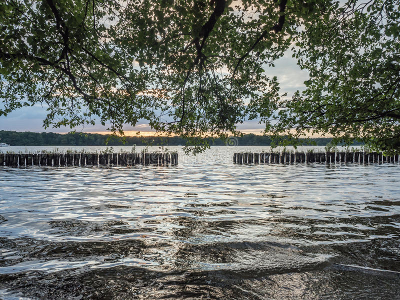 Sun que ajusta-se sobre um lago nas madeiras, no verão imagem de stock royalty free