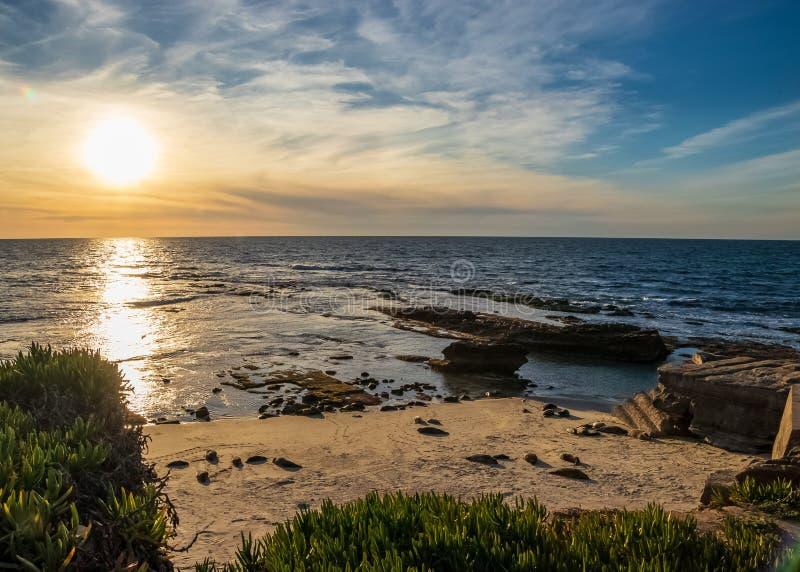 Sun que começa a ajustar-se sobre a praia de La Jolla, onde os leões de mar descansam perto do oceano imagens de stock royalty free