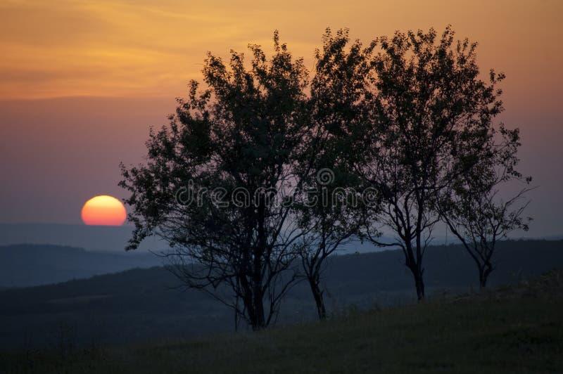 Sun que fija sobre paisaje con los árboles imagenes de archivo
