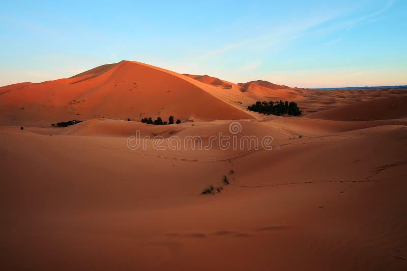 Sun que sube sobre la duna de arena grande en desierto del Sáhara fotos de archivo libres de regalías