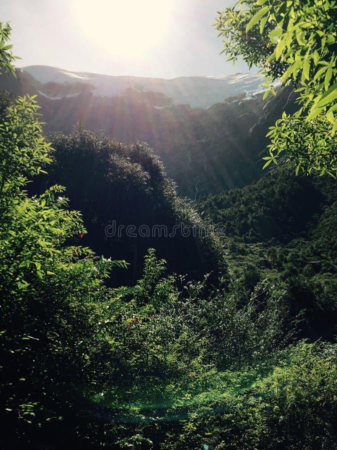 Sun Ray fotografia stock libera da diritti