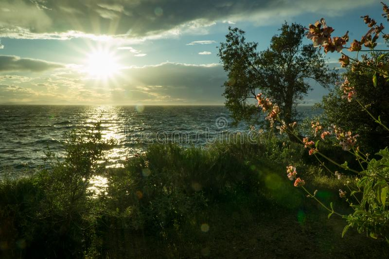 Sun Ray Hitting Body of Water Green Grass Trees White Clouds during Sunrise royalty free stock image