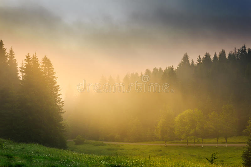 Download Sun Rays Breaking Through The Clouds And Fog In Forests Royalty Free Stock Photo - Image: 32358015