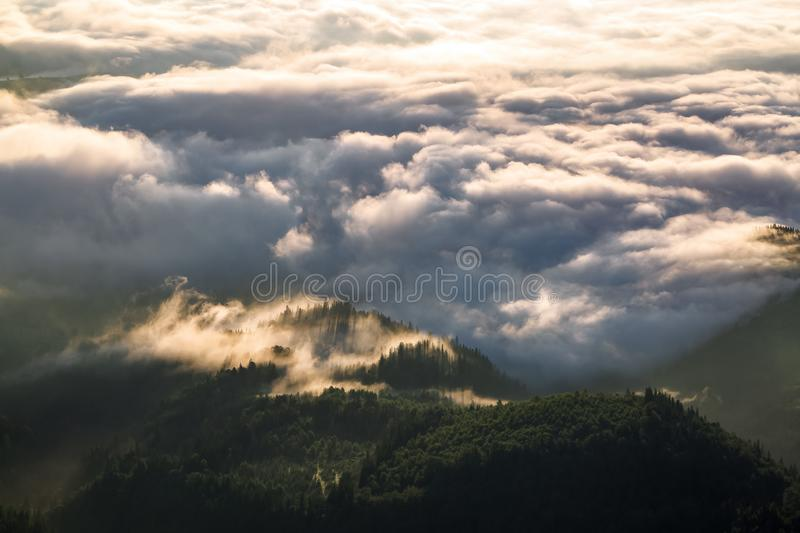 The sun rays are breaking through the thick dramatic mysterious fog and enlighten the forest. Landscape with beautiful mountains. royalty free stock photos