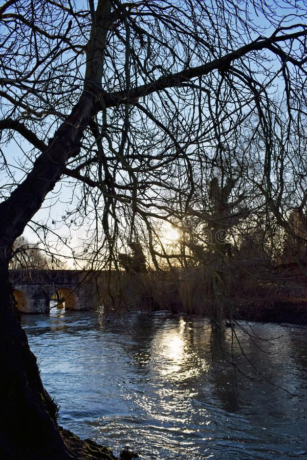 A picturesque river scene. The sun rays coming through the branches of the tree and leaving the reflection on the water of the river Stour with the large brick royalty free stock photos