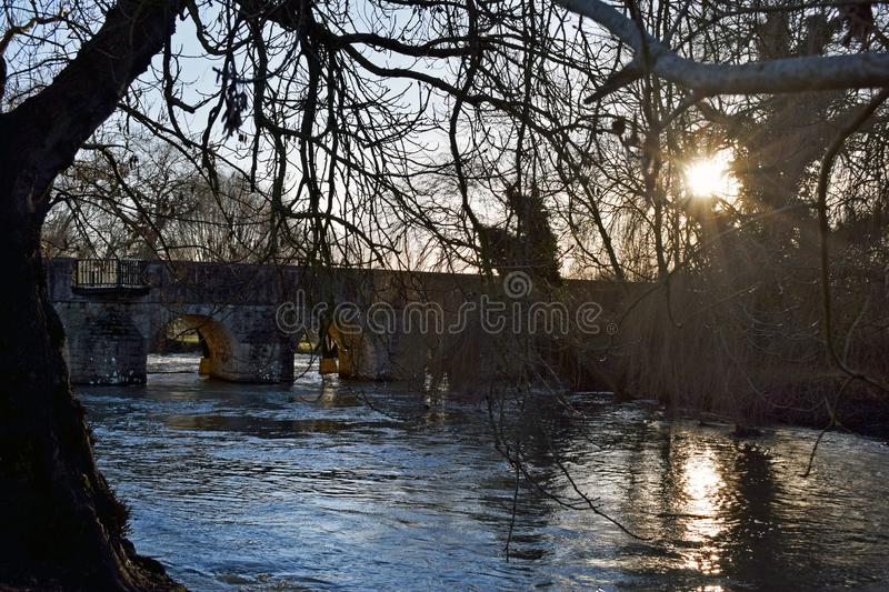 A picturesque river scene. The sun rays coming through the branches of the tree and leaving the reflection on the water of the river Stour with the large brick stock photo
