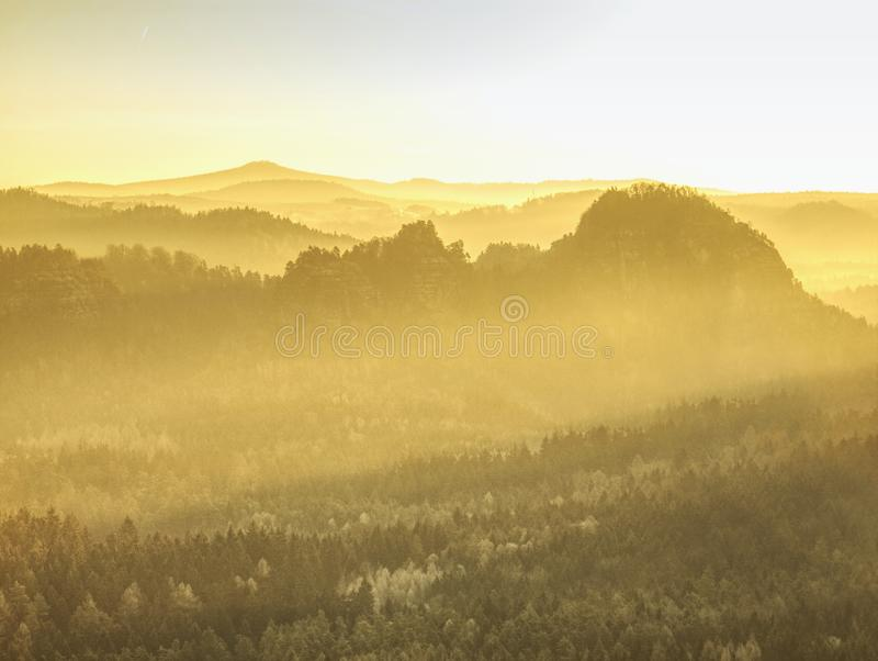 Sun rays illuminating sharp treetops of forest. Strong sun rays illuminating sharp treetops of misty forest scenery with fresh and vibrant orange foliage shadow royalty free stock images