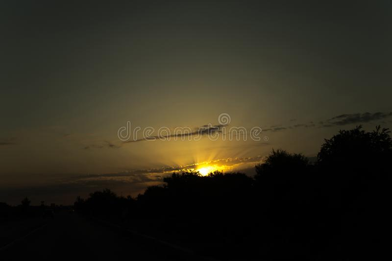 A sun rise from bushes stock photo