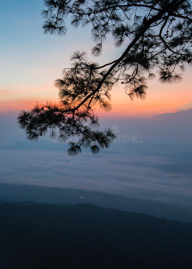 Sun rise morning stock image