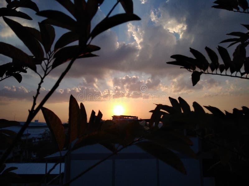 Sun rise. Dawning royalty free stock image