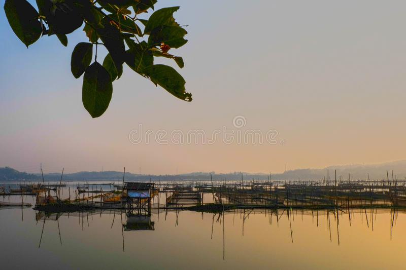The sun rises on the fish cages in the swamp stock photography