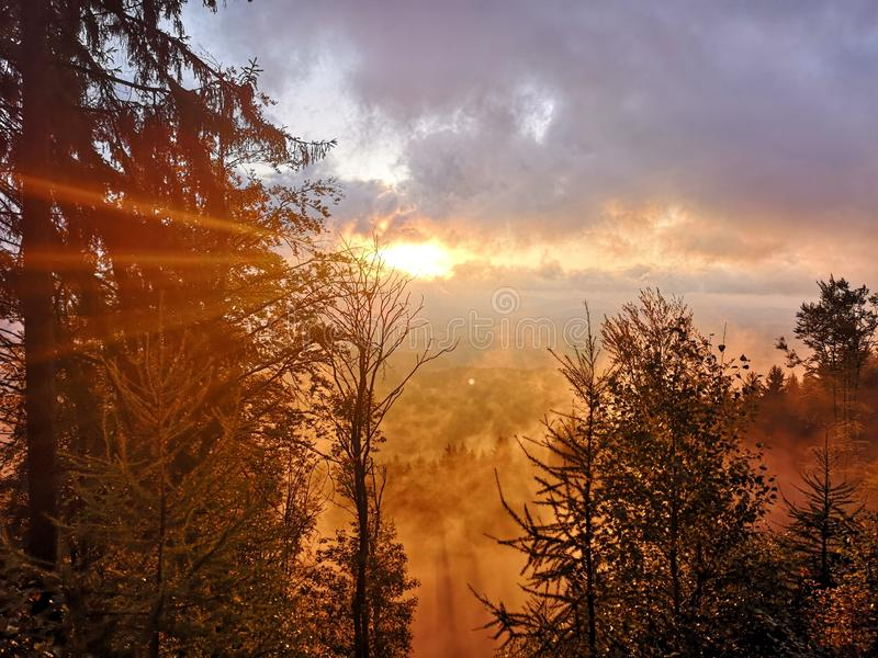 Sunrise in the fog royalty free stock photography