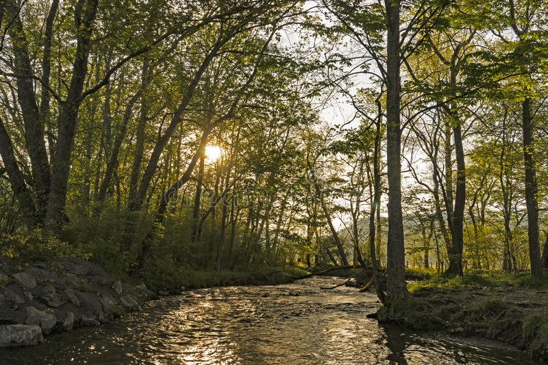 The sun rises over a small creek in Cades Cove. Sunrise over a small creek in Cades Cove stock images