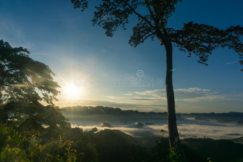 The sun is rising. Beautiful nature while the sun is rising royalty free stock photos