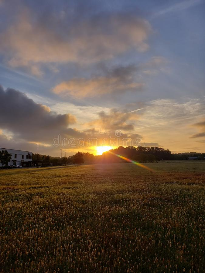 Sun rising over the field. Landscape stock images