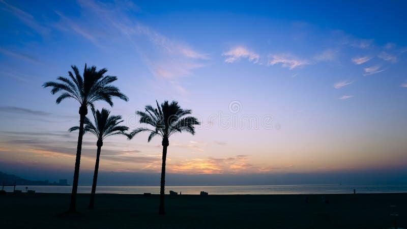 The sun rising over the horizon royalty free stock photo