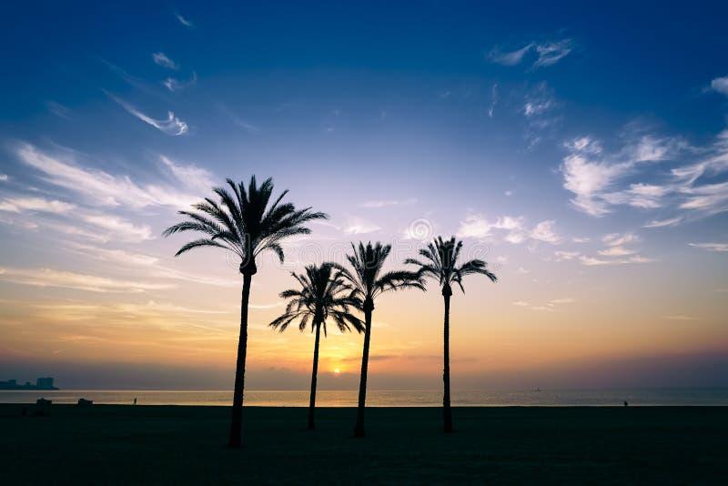 The sun rising over the horizon royalty free stock photos