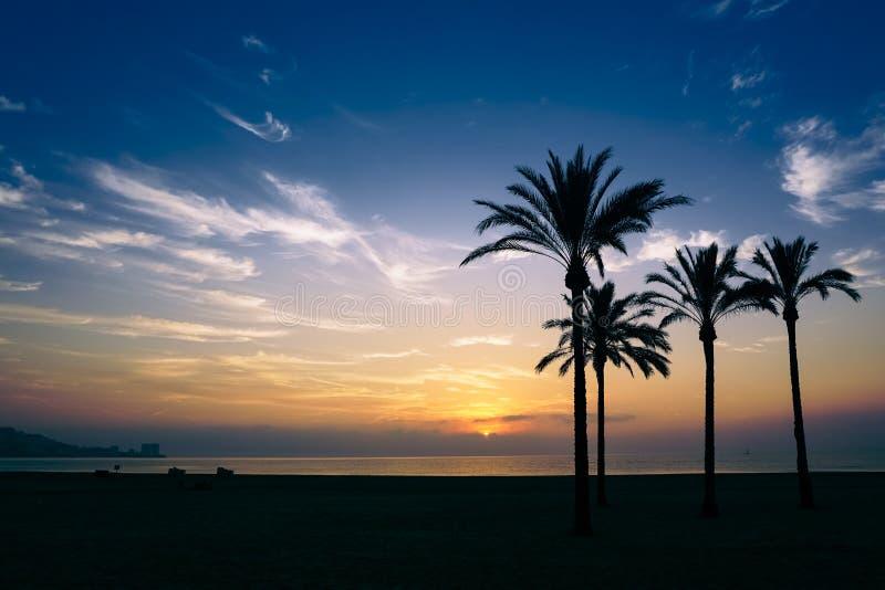The sun rising over the horizon stock photos