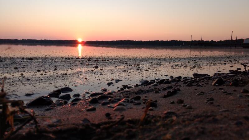 Sun rose photo libre de droits