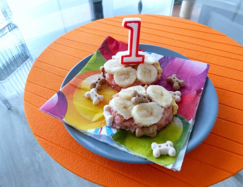 Sun's 1st Birthday! Free Public Domain Cc0 Image