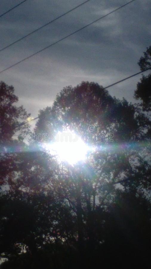 Sun semi-transparent par des arbres photos stock