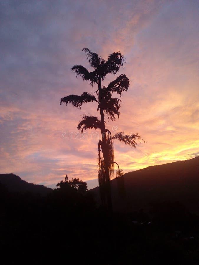 Sun set. Evening time click stock photography