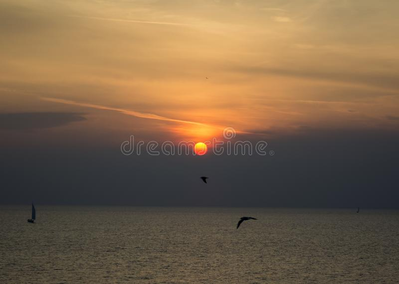 SUN SETS BEHIND CLOUD AND SEAGULLS stock images