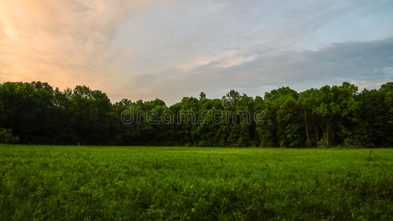 The Sun Sets the Deer Come Out. A scenic sunset looking across a field into the woods. Deer can be seen off in the distance stock photos