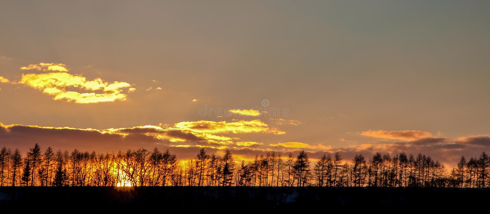 The sun setting behind a ridge of silhouetted trees stock photo