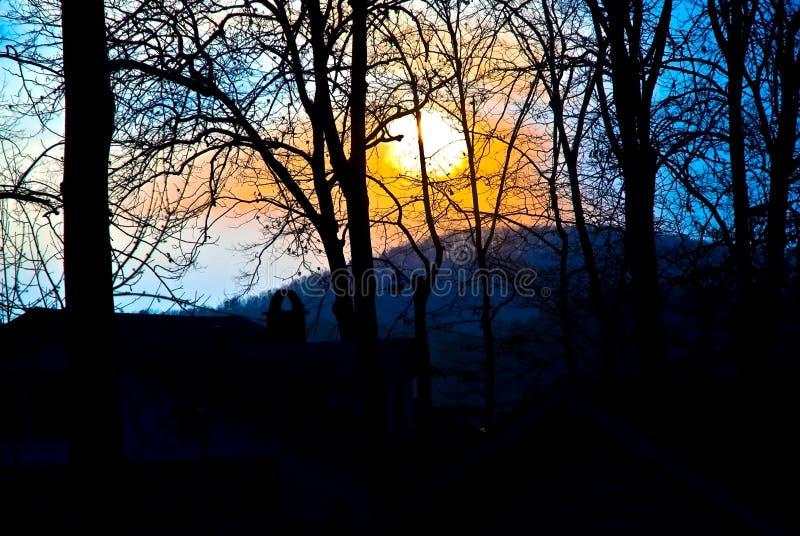 Sun Setting Behind Trees Royalty Free Stock Image
