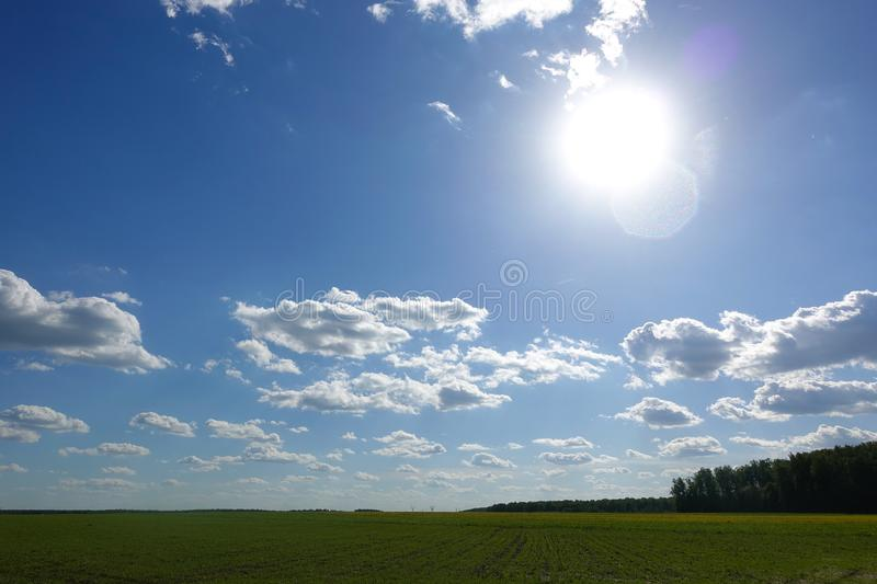 The sun shines over a grassy field and clouds int he sky.  stock images