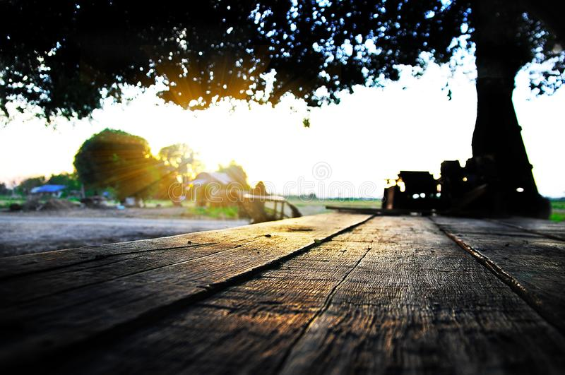 Sun shining down on a wooden table royalty free stock photography