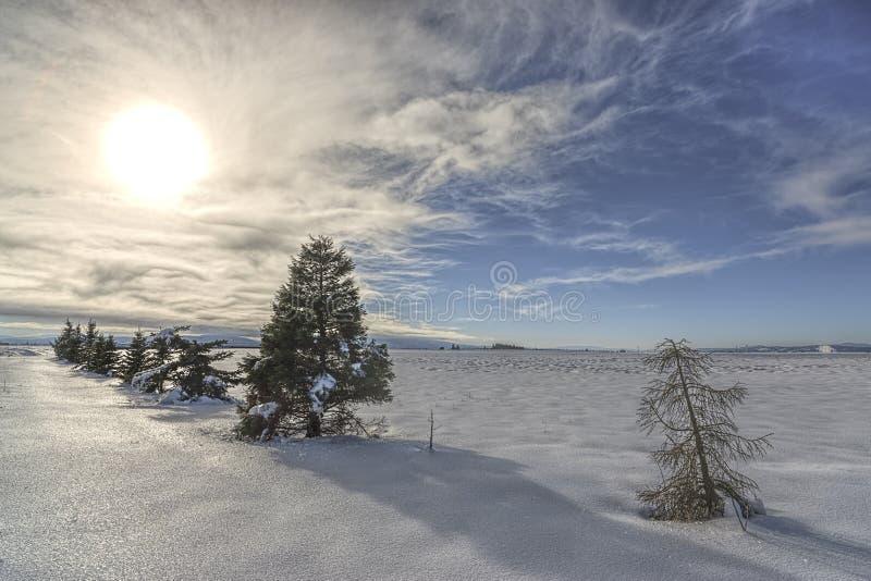 Sun sopra la scena rurale di inverno fotografie stock libere da diritti