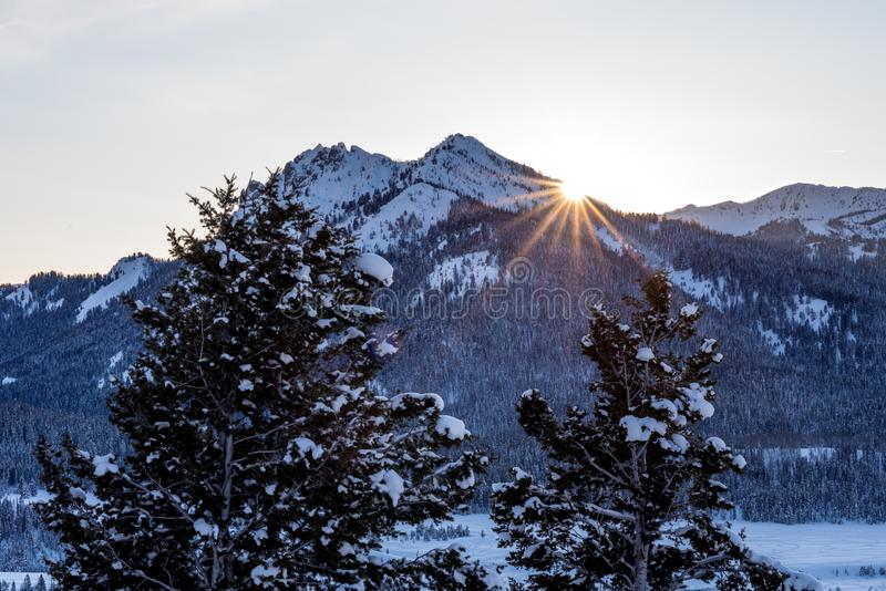 Sun star peaks from behind a mountain on a winters evening in Idaho. High Idaho mountains sunset with a sun star and opine trees royalty free stock images