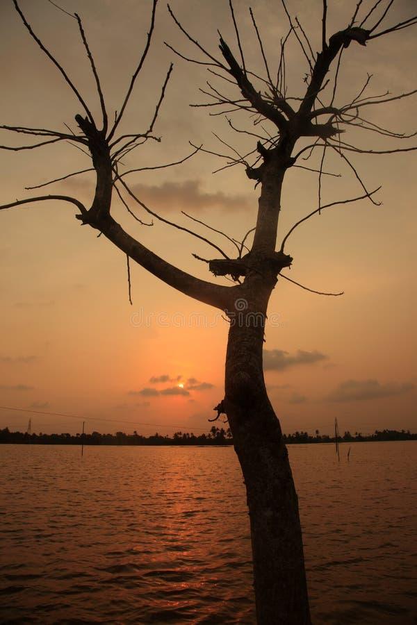 Sun stellte in die Stauwasser von Kerala ein stockfotos