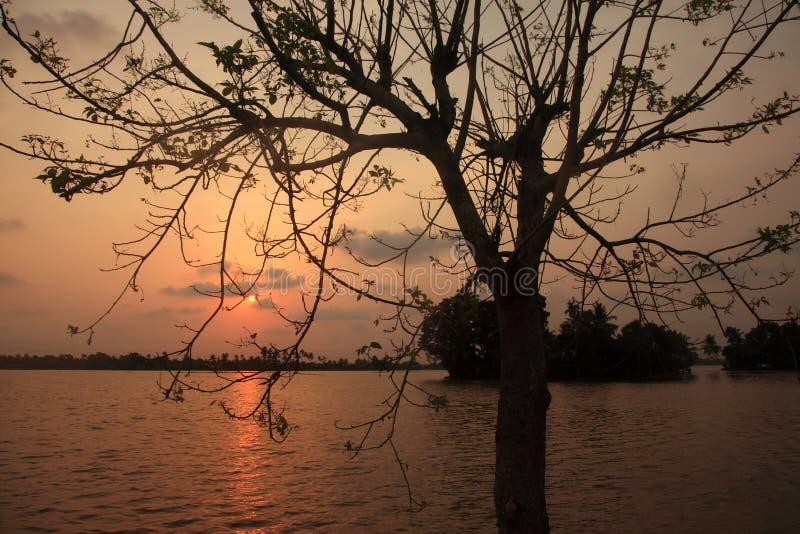 Sun stellte in die Stauwasser von Kerala ein lizenzfreies stockbild