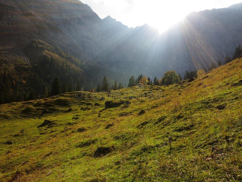 Sun strahlt das Strömen in alpines Tal am Fall aus stockfotos