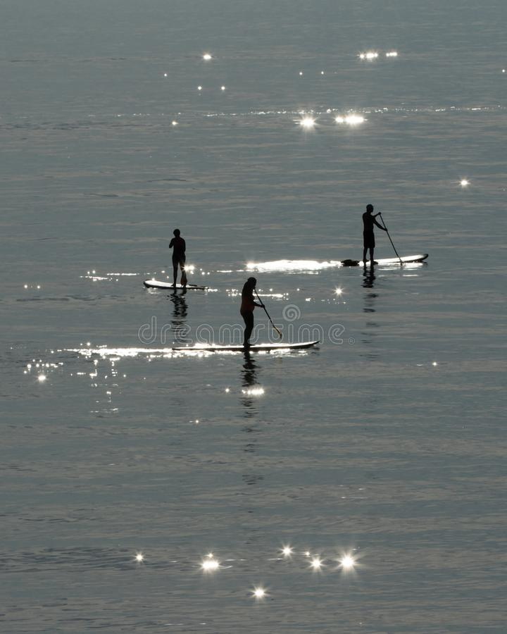 Sun-Sucher am ovalen Strand stockfotos