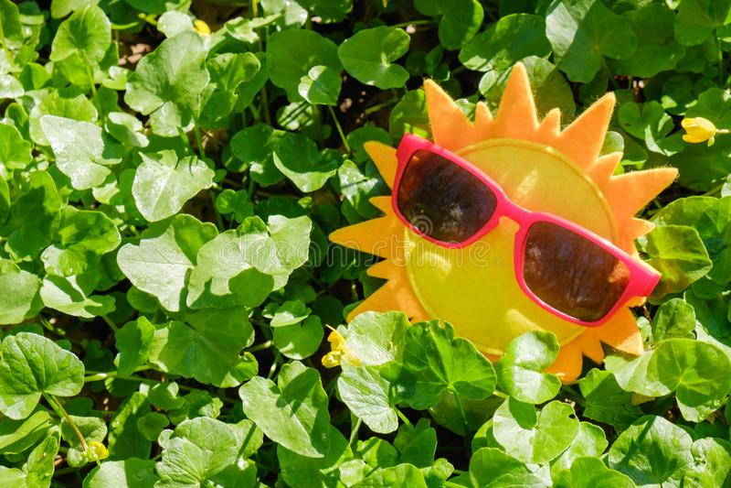 Sun summer sunglasses yellow concept,  grass vintage. Sun summer sunglasses yellow concept vacation travel,  grass vintage royalty free stock photo